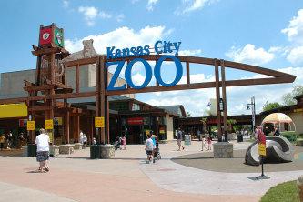 DSC 6431 | Kansas City Zoo | 360kc
