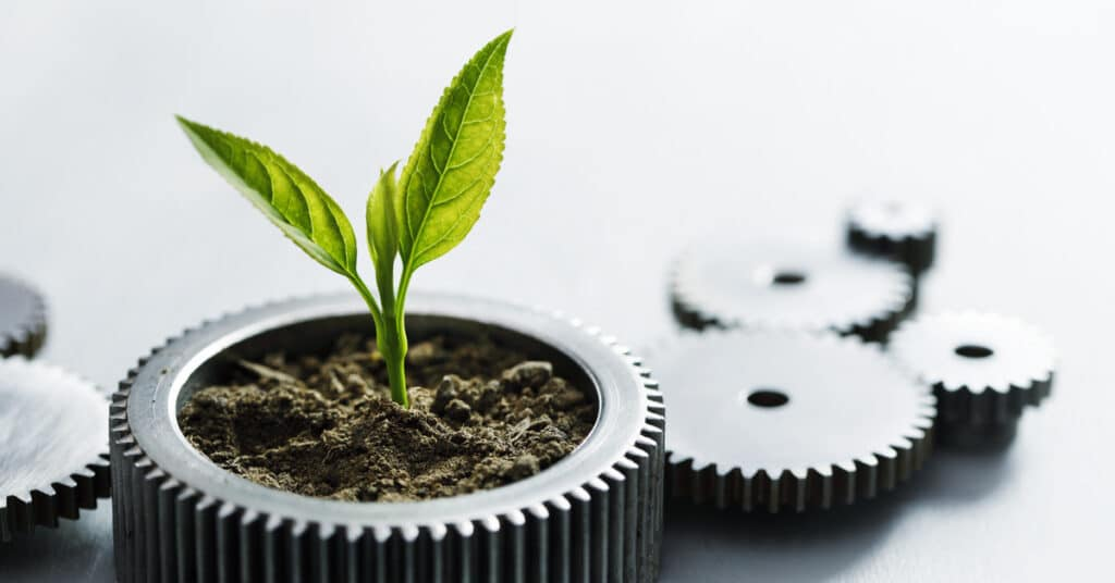 creative growth strategies | 4 Creative Growth Strategies for Your Business | 360kc